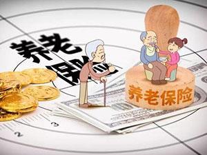 职工养老保险和灵活就业养老保险的4个区